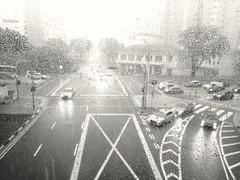 327/366: a stormy Sunday