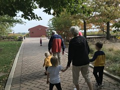 "Walking at Peck Farm • <a style=""font-size:0.8em;"" href=""http://www.flickr.com/photos/109120354@N07/50633567118/"" target=""_blank"">View on Flickr</a>"