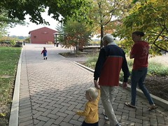 """Walking at Peck Farm • <a style=""""font-size:0.8em;"""" href=""""http://www.flickr.com/photos/109120354@N07/50633569393/"""" target=""""_blank"""">View on Flickr</a>"""