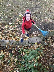 "Luc Rakes Leaves • <a style=""font-size:0.8em;"" href=""http://www.flickr.com/photos/109120354@N07/50633878548/"" target=""_blank"">View on Flickr</a>"