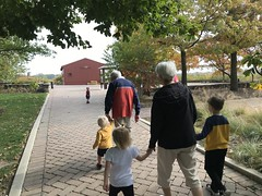 "Walking at Peck Farm • <a style=""font-size:0.8em;"" href=""http://www.flickr.com/photos/109120354@N07/50634402877/"" target=""_blank"">View on Flickr</a>"