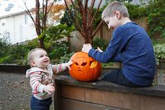 303/366 pumpkin carving