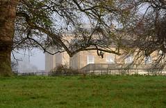 Photo of Basildon Park 22 November 2020 022