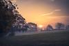 Abington Park Sunrise