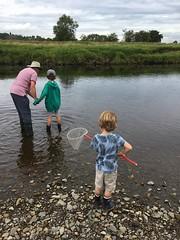 Ribble Rivers Trust's summer challenge