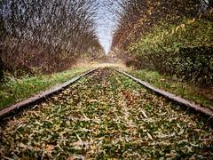 2020-11-24 16.22.13 - Railpath, Et eller andet, 329-366, Uge 48, Allingåbro, Randers - 2020-11-24 17-01-35 (C,Smoothing4)-_B244244-9-modded - ©Anders Gisle Larsson