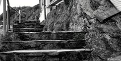 Photo of Decaying Steps. Polperro. Sept 2020