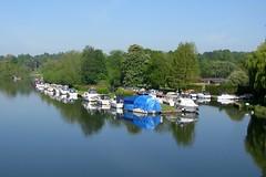 Photo of View of the Thames near Bisham