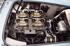 AC Shelby Cobra 289 FIA (1965)