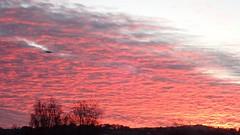 Photo of 26 November 2020 Exeter (12)