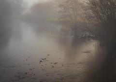 Photo of Fog,  River Calder, Renfrewshire, Scotland, UK