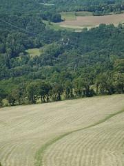 Field @ Rocher de Léaz