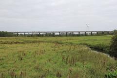 Photo of Bennerley Viaduct