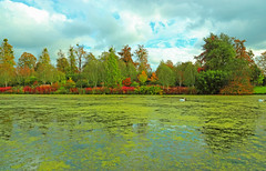 Photo of Upper Lake, Marks Hall