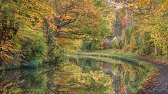 Photo of Bridgewater Canal. Lymm.