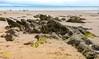 Saundersfoot Beach, Saundersfoot, West Wales. UK. Europe.