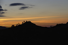 Photo of sunset silhouettes