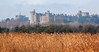 Arundel over Reedbeds