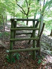 Ladder @ Clarafond-Arcine