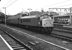 Photo of F530   45037 Crewe 24 July 1987S Widdowson   946x (2)