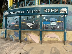 Ocean Park, Ai Coral Reef Mapping