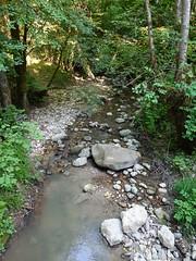 Ruisseau de Parnant @ Léaz