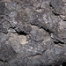 Scoriaceous basalt (Fillmore Craters, Black Rock Desert, MIllard County, Utah, USA) 5