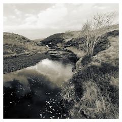 Photo of Duchal Moor 2020-11-28-03002