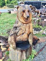 Oregon Coast - wood carver