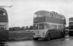Photo of humb - preserved rotherham ct trolleybus 37 stc c1974 JL