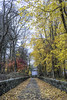 Autumn Driveway