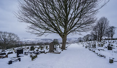 Photo of Crookes cemetery in snow, Sheffield, UK