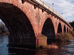Photo of 2020 11 22 - Smeaton's Bridge arches