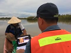 Surveying a wetland