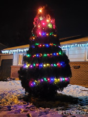 December 7, 2020 - Beautiful Christmas decorations in Thornton. (LE Worley)