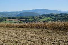 Le Mont de Musièges @ Plateau de la Verniaz @ Desingy