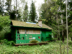 House in the forest_