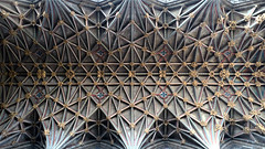Lierne vault over choir, Gloucester Cathedral