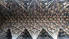 Lierne vault over choir, Gloucester Cathedral