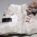 Phlogopite mica in marble (Franklin Marble, Mesoproterozoic, 1.03-1.08 Ga; Franklin, New Jersey, USA) 2