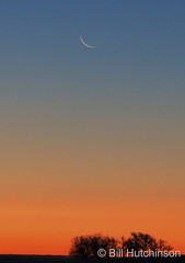 December 13, 2020 - Sunrise and the moon. (Bill Hutchinson)