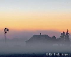 December 13, 2020 - A foggy morning on the plains. (Bill Hutchinson)