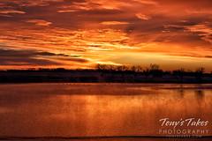 December 12, 2020 - A gorgeous sunrise on the plains. (Tony's Takes)