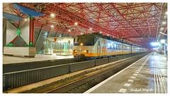 Nederlandse Spoorwegen 2946 ( SGMm III) Lelystad Centrum ( NL)
