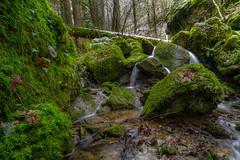 Kleiner Wasserfall am Großbach