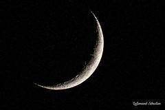 Croissant de lune