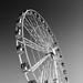 The Wheel - Lungomare