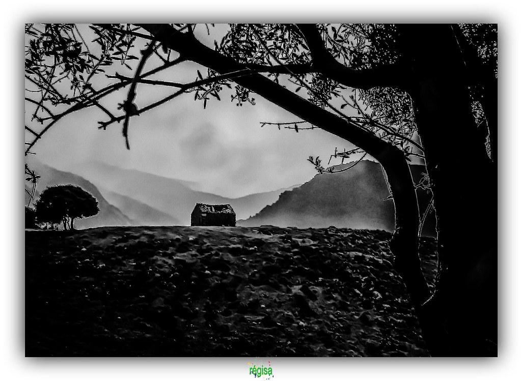 Eddie Vedder images