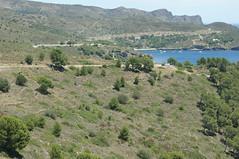 Gravel road to Cala Joncols / Schotterpiste zur Cala Joncols