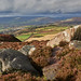 View from Higger Tor (2)